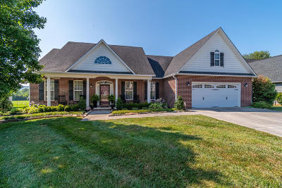 Knoxville Single Family Home For Sale: 2518 Kings Mountain Lane