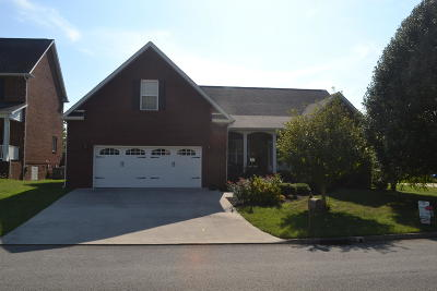 Knoxville Single Family Home For Sale: 950 Annatole Lane