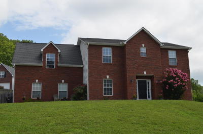 Knox County Single Family Home For Sale: 2500 Forest Valley Lane