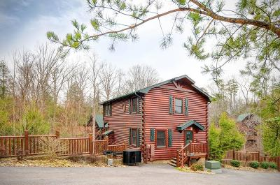 Gatlinburg Single Family Home For Sale: 827 Spirit Loop