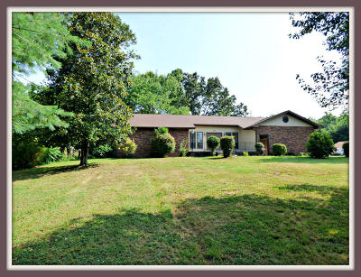 Sevierville Single Family Home For Sale: 821 Catlett Rd