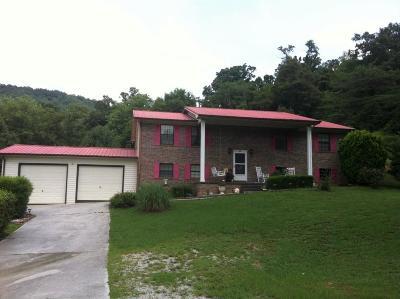Jacksboro Single Family Home For Sale: 118 Englewood Lane