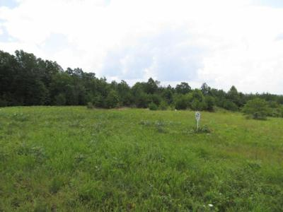 Residential Lots & Land For Sale: 5.01ac Vista View Pkwy