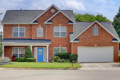 Knoxville Single Family Home For Sale: 9101 Sway Branch Lane