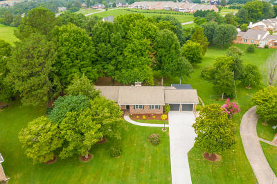 Knoxville Single Family Home For Sale: 7525 Jessilee Drive