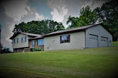 Tazewell Single Family Home For Sale: 792 Jim Pressnell Rd