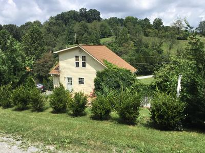 Tazewell Single Family Home For Sale: 125 Sweet Lane