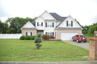 Strawberry Plains Single Family Home For Sale: 9316 Gabrielle Rd
