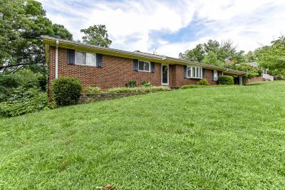 Blount County Single Family Home For Sale: 1141 View Drive