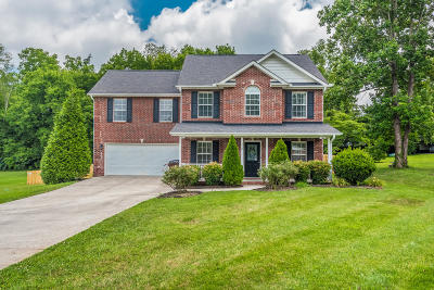 Knoxville Single Family Home For Sale: 510 Gregg Ruth Way
