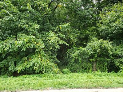 Residential Lots & Land For Sale: 1233 Ohio Ave