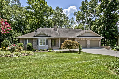 Loudon Single Family Home For Sale: 105 Agowa Place