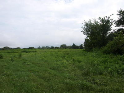 Residential Lots & Land For Sale: 627.50ac Barnes Rd