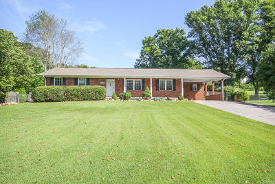 Maryville Single Family Home For Sale: 1207 Blockhouse Rd