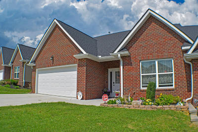 Sevierville Condo/Townhouse For Sale: 1010 Woullard Way
