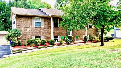 Knox County Single Family Home For Sale: 10816 Dineen Drive