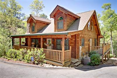 Sevier County Single Family Home For Sale: 2729 Buck Board Lane