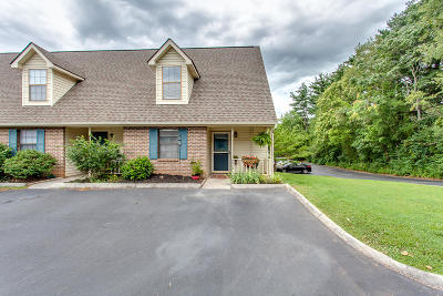 Knoxville Single Family Home For Sale: 9029 Fountain Brook Lane