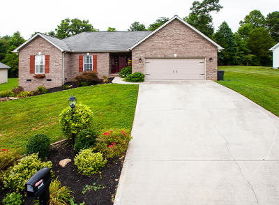 Knoxville Single Family Home For Sale: 4813 Basenger Drive