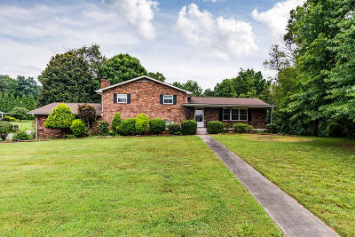 Knoxville Single Family Home For Sale: 8721 Rushmore Drive