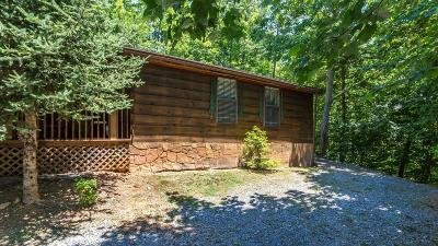 Pigeon Forge Single Family Home For Sale: 1513 School House Gap Rd