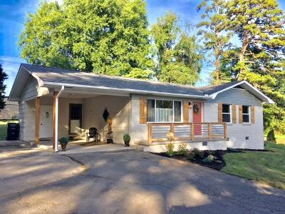Knoxville Single Family Home For Sale: 2008 Antietam Rd