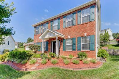 Knoxville Single Family Home For Sale: 10301 Mantooth Lane