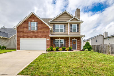 Knoxville Single Family Home For Sale: 7307 Lucky Clover Lane