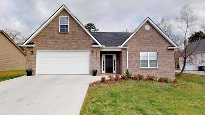 Knoxville Single Family Home For Sale: 6511 Ball Rd