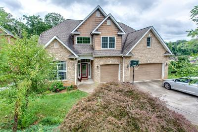 Knoxville Single Family Home For Sale: 1809 Cascade Falls Lane