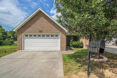 Knoxville Condo/Townhouse For Sale: 4415 Avery Village Way