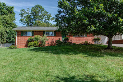 Knoxville Single Family Home For Sale: 5319 Palmetto Rd