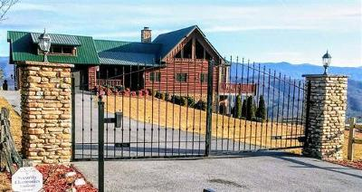 Sevierville Single Family Home For Sale: 3065 Smoky Bluff Tr
