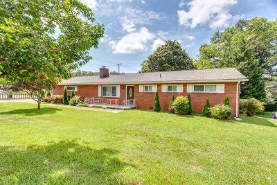 Knoxville Single Family Home For Sale: 7900 Livingston Drive