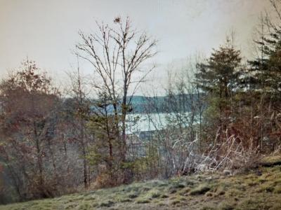 Union County Residential Lots & Land For Sale: Lot 694 Russell Brothers