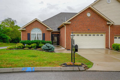 Sevier County Condo/Townhouse For Sale: 814 Fountain View Way