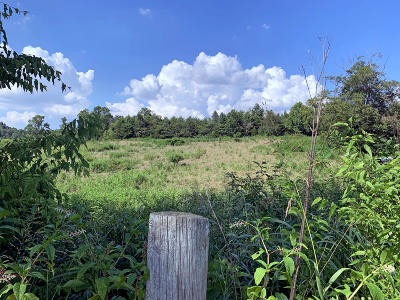 Residential Lots & Land For Sale: 2069 E E Old Topside Rd