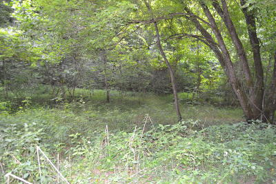 Claiborne County Residential Lots & Land For Sale: Robinson Rd Rd