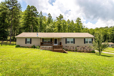 Sevier County Single Family Home For Sale: 1921 Jerry Lynn Way