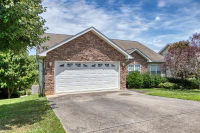 Sevier County Single Family Home For Sale: 2518 Brookwood Drive