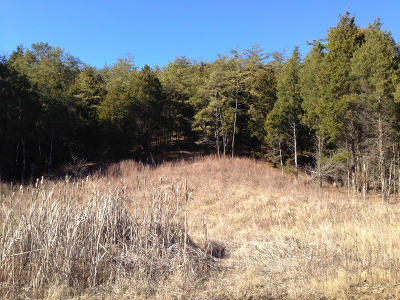 Anderson County, Campbell County, Claiborne County, Grainger County, Hancock County, Hawkins County, Jefferson County, Union County Residential Lots & Land For Sale: Lot 70 Grande Vista Drive