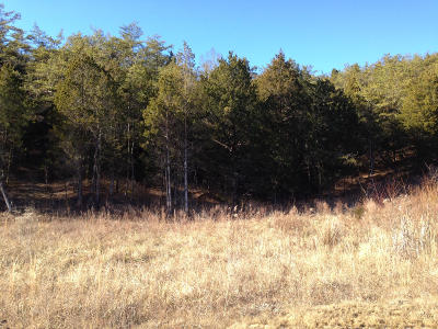 Anderson County, Campbell County, Claiborne County, Grainger County, Hancock County, Hawkins County, Jefferson County, Union County Residential Lots & Land For Sale: Lot 71 Grande Vista Drive