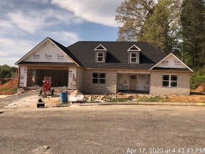 Corryton TN Single Family Home For Sale: $284,900