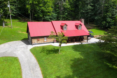 Single Family Home For Sale: 374 Pumpkin Hollow Rd