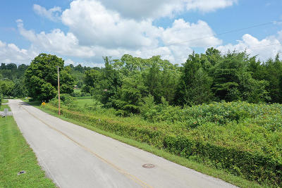 Anderson County, Campbell County, Claiborne County, Grainger County, Hancock County, Hawkins County, Jefferson County, Union County Residential Lots & Land For Sale: Parcel 059.06 Milldale Drive
