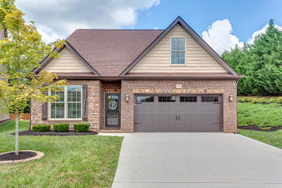 Knoxville Single Family Home For Sale: 11901 Summit Station Lane