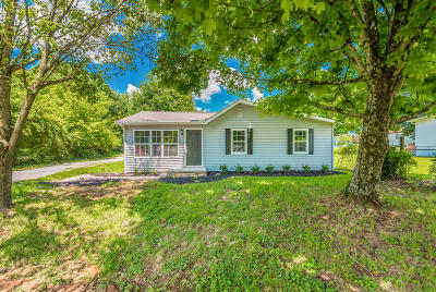 Knoxville Single Family Home For Sale: 5202 Murphy Rd