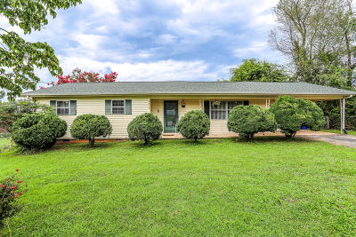 Blount County Single Family Home For Sale: 1910 Skyline Drive