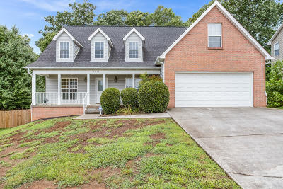 Knoxville Single Family Home For Sale: 1817 Silver Cloud Lane