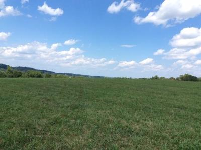 Loudon County Residential Lots & Land For Sale: Dry Valley Rd